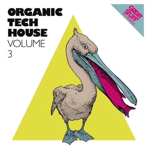 Album Art - Organic Techhouse Volume 3