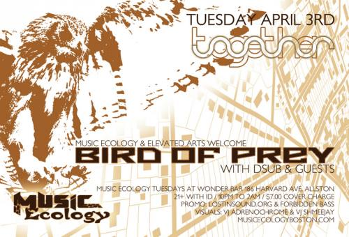 Bird of Prey with Dsub at Music Ecology - Together Festival