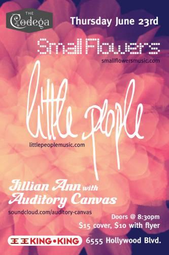 LITTLE PEOPLE + JILLIAN ANN/AUDITORY CANVAS + SMALL FLOWERS