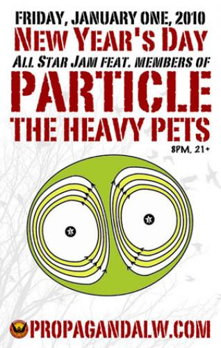 The Heavy Particles