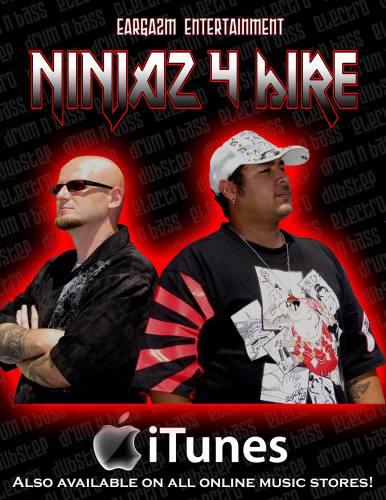 NINJAZ 4 HIRE Logo