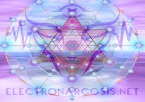 Willy Electronarcosis Logo