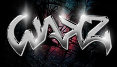The Wakz Logo