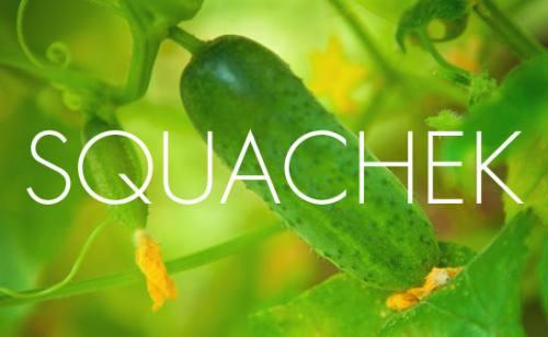squachek Logo