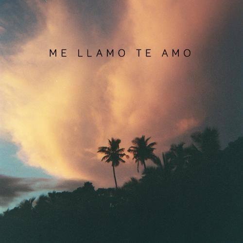 Me Llamo Te Amo Logo