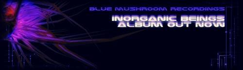 blue mushroom recordings Logo