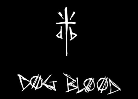 Dog Blood Profile Link