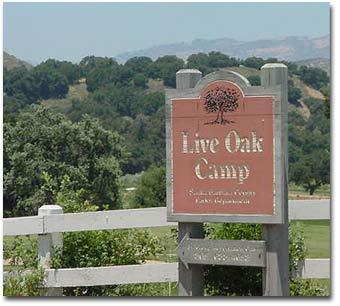 Live Oak Camp Logo