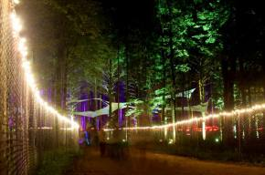 Electric Forest Festival Announces Initial Lineup, Fans Crash Website