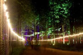 Electric Forest Festival Announces Initial Lineup, Fans Crash Website