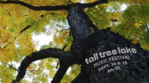 Small gets Tall: A gentle evening at Tall Tree Lake Festival