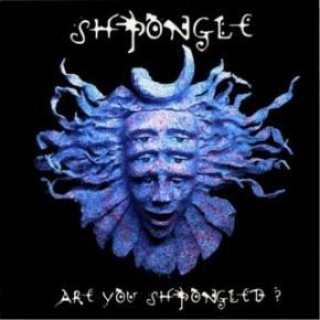 SHPONGLE: