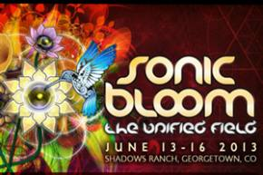 Sonic Bloom 2013 announces 2nd wave lineup Preview