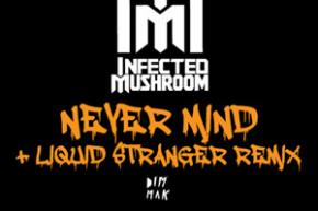 Infected Mushroom: Never Mind Remixes