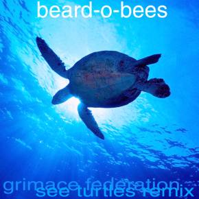 Grimace Federation - See Turtles (Beard-o-Bees Remix)