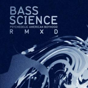 Bass Science ft Mikey Murka - Crazy World (Sounduo remix)