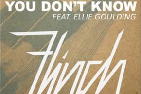 Flinch ft Ellie Goulding - You Don't Know