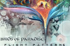 Birds of Paradise - Mirage [EXCLUSIVE PREMIERE]