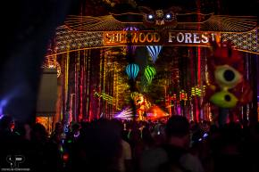 [PHOTOS] STUNNING shots of Electric Forest will make you drool with envy