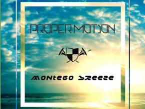 Proper Motion - Montego Breeze [EXCLUSIVE ARISE Festival PREMIERE]