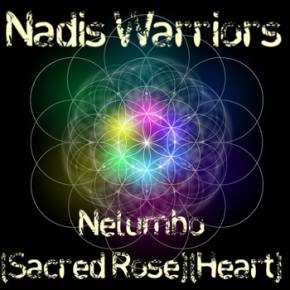Nadis Warriors Release New Track to First 1,000