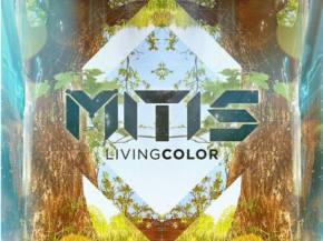 [PREMIERE] MitiS - Vulnerability [Living Color 3-14 Born Records]