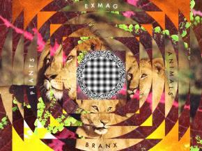 [PREMIERE] Exmag & BRANX - Game Genie (Interlude) w/illumntr [April 1]