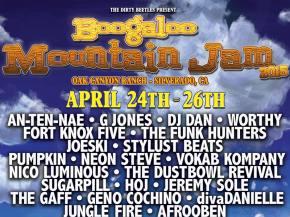 Top 10 Boogaloo Mountain Jam Artists Preview