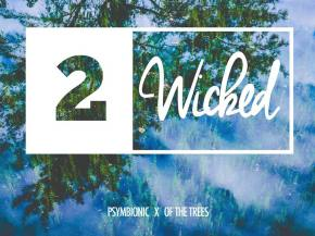 Psymbionic & Of The Trees team up again for '2 Wicked' [Gravitas]
