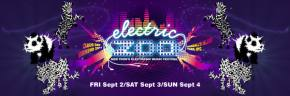 Electric Zoo Festival Expands to Three Days