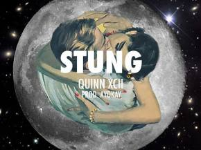 Quinn XCII gets a chilltrap remix from Rickyxsan for 'Stung'