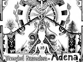Tangled Branches releases debut album Adena via Transcendent Tunes