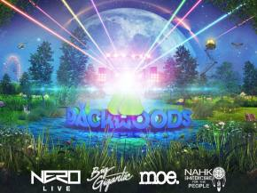 NERO, Filibusta, Dreamers Delight & more join Backwoods 2016 lineup Preview