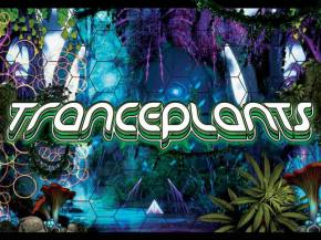 A 24-hour trance party in Medocino County? Yeah, we're in.