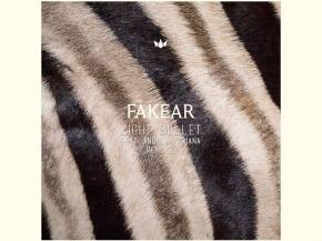 Fakear releases 'Light Bullet' remixes on Counter Records
