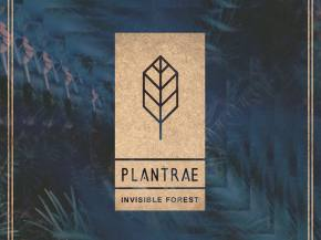 PLANTRAE releases first new music in more than three years!