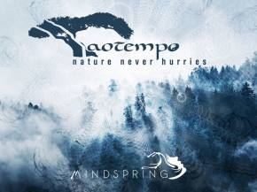 Taotempo premieres psydub masterpiece from Mindspring Music album