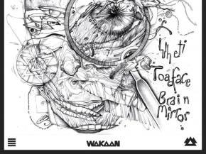 Yheti & Toadface unleash Brain Mirrors EP on Wakaan