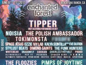 Tipper, Polish Ambassador, Kalya headline Enchanted Forest Gathering Preview