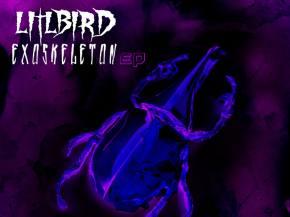 LITLBIRD premieres new Secret Recipe collab 'Chrysalis'