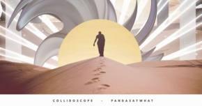 Collidoscope & Pandasaywhat?! collab on 'Set Me Free'