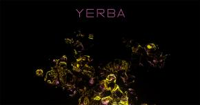 tsimba x Maxfield get all geeked on 'Yerba'