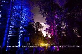Electric Forest Review - Day 1 (6.29.11)
