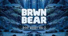 BRWN BEAR shares 30 minutes of original tunes on DEEP WOODS VOL 2