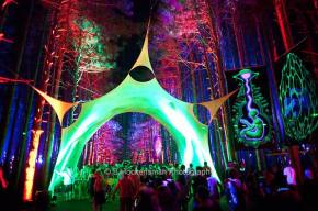 Electric Forest Review - Day 2 (6.30.11)